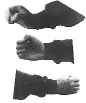 Baji fist